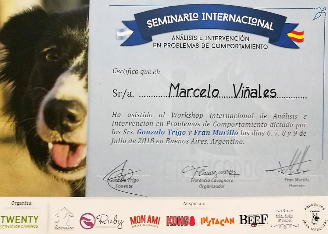 Certificado El Educa-dog