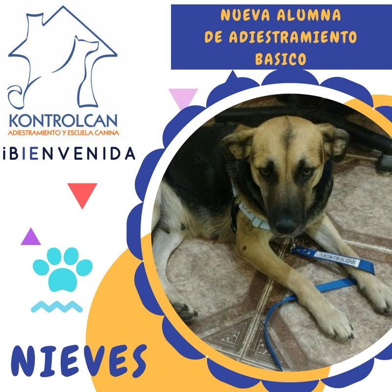 Bienvenida_Nieves-1