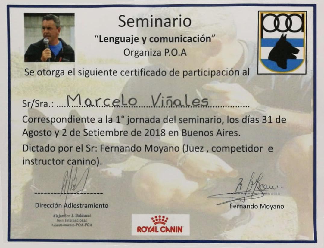 Certificado 10 Spt